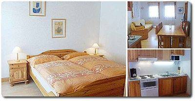 logements-castel-club-leysin-residence-apparthotels-leysin